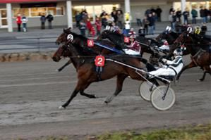 Trotting at Umåker
