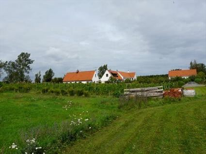 Domaine Sånana, Skillinge vineyard